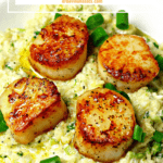 pinterest image for seared scallops & cauliflower risotto